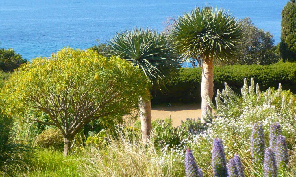 activite-jardin-des-mediterranees